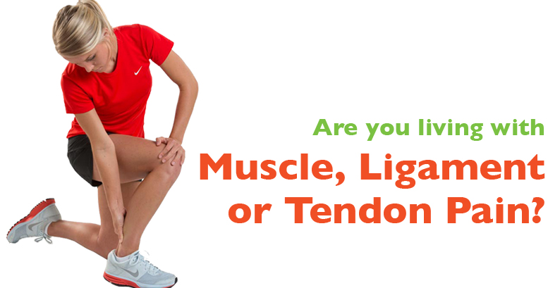 Muscle, ligament or tendon